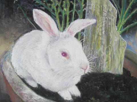 Salt Rabbit pot, 18x14, price 220, Pastel, wood